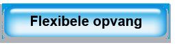 Flexibele_opvang_Button
